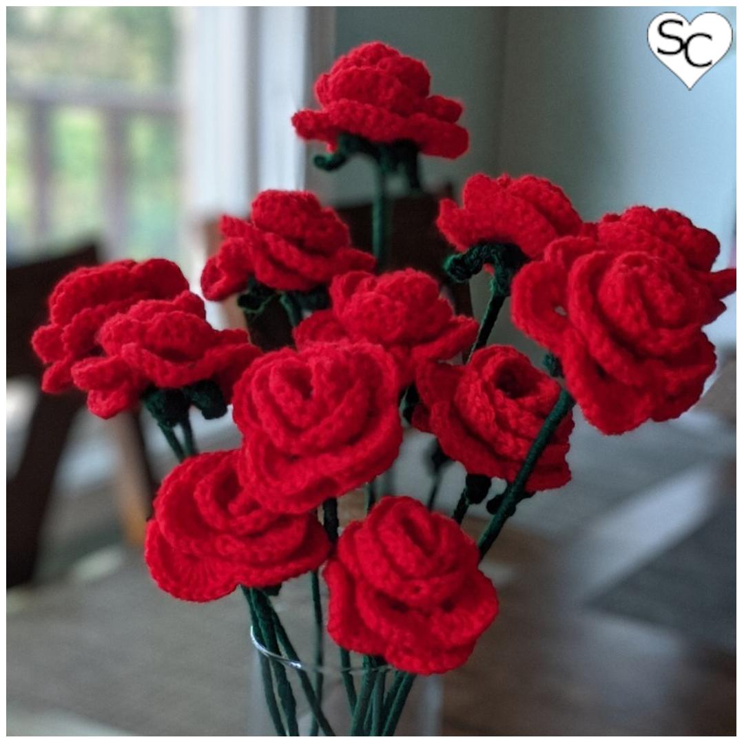 12 Single Stem Roses